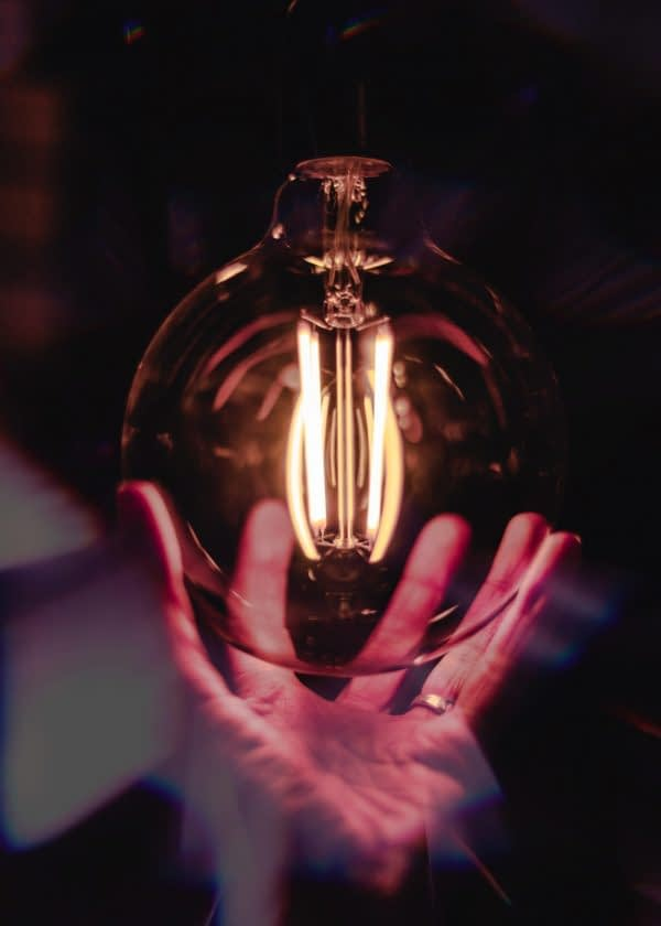 close-up-photo-of-person-holding-bulb-1434984